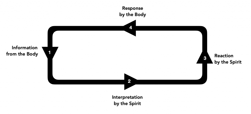religious intrusive thoughts loop between the body and the spirit